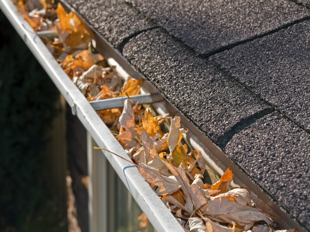 What can we do for your gutters?